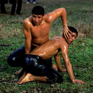 Luchadores de aceite de oliva