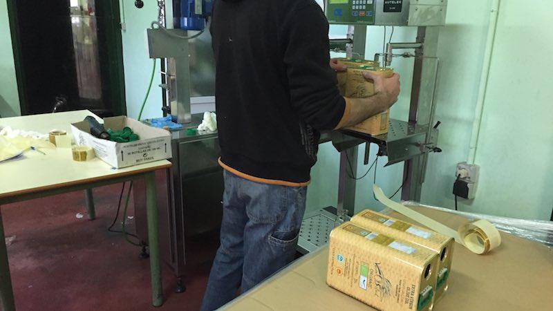 Aceite de oliva ecoógico recién envasado