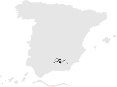Aceite de oliva de Sierra Mágina Jaen