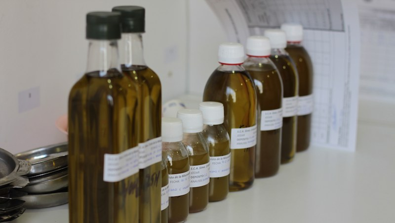 Analisis acidez de aceite de oliva en DO
