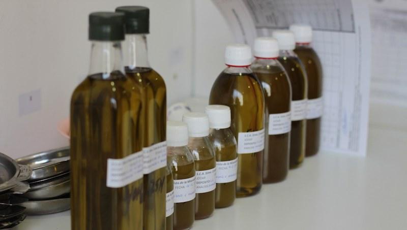La acidez del aceite de oliva y su sabor