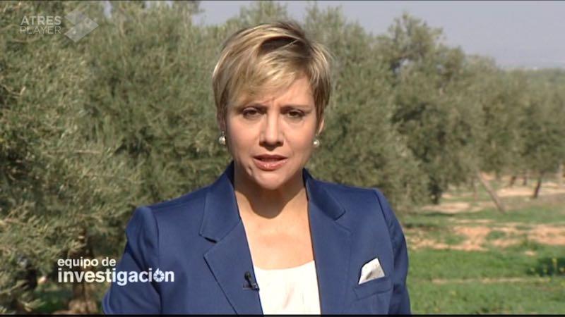 El mejor aceite de oliva del mundo