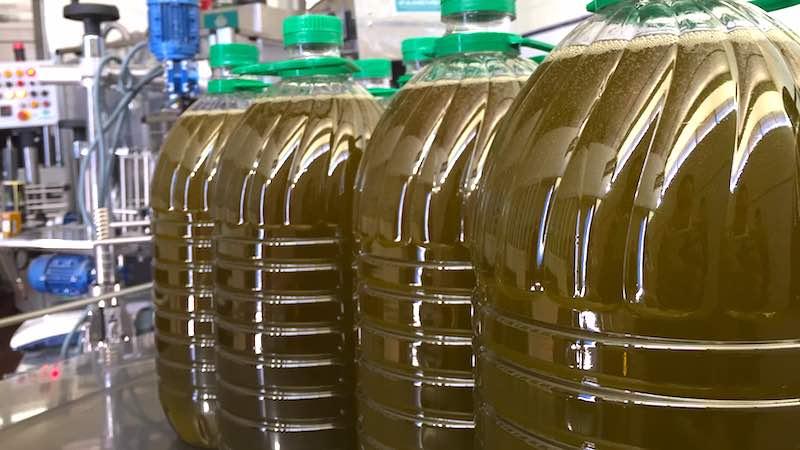 Aceite de oliva recién envasado