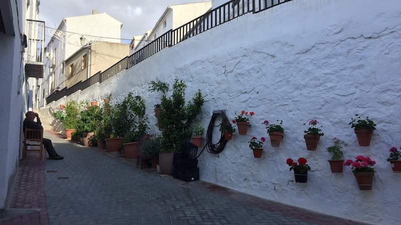 Solera_calle