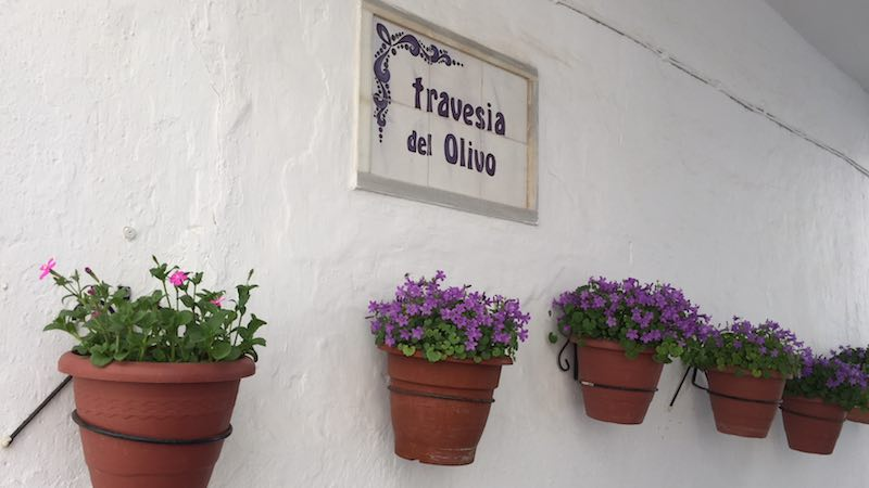 Solera_travesia