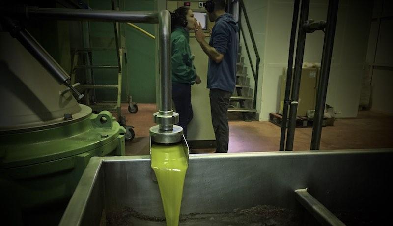 Cosecha aceite 2018/2019 en la centrífuga